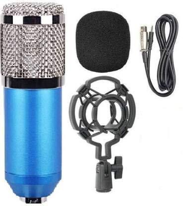 best mic under 1000 for singing