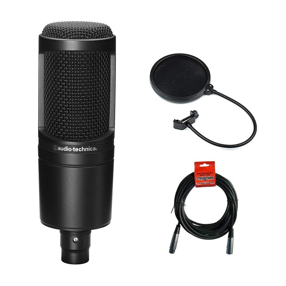 Audio Technica AT2020 Condenser Studio microphone under 10000